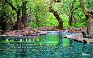 unceasing fruitfulness tree by water